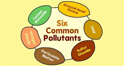 The Causes and Effects of Air Pollution college essay